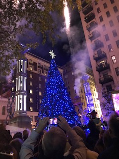 O Christmas Tree on RockyTop