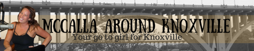 A Great Handbag,A Strong Woman, andKnoxville